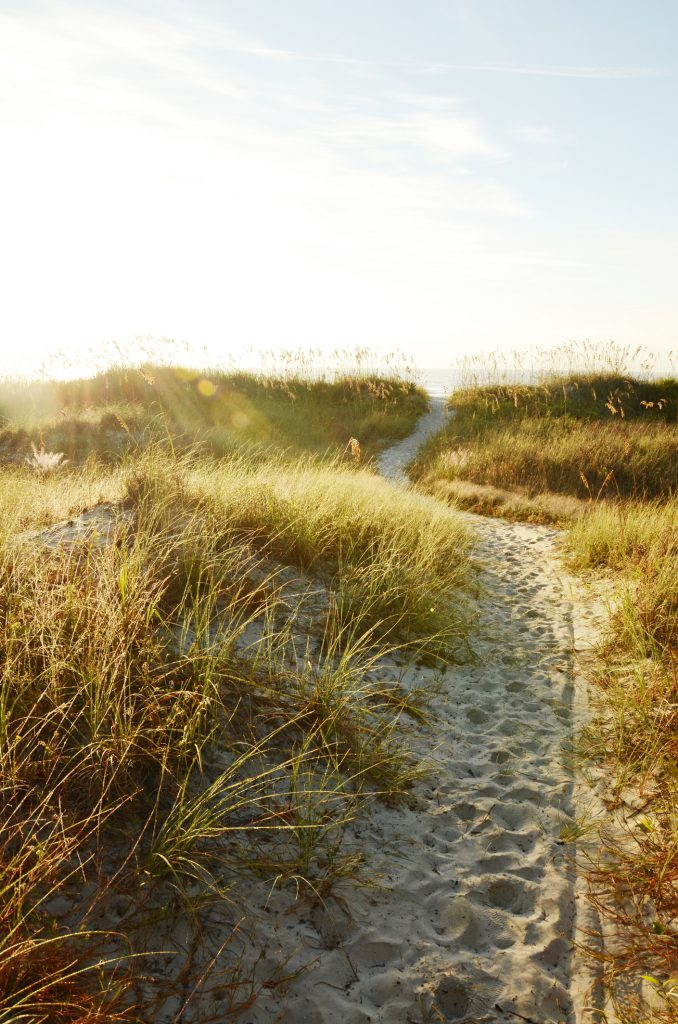 3 Local Walking Trails to Enjoy on Hilton Head Island